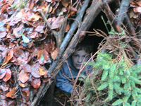 Well camoflaged in his shelter